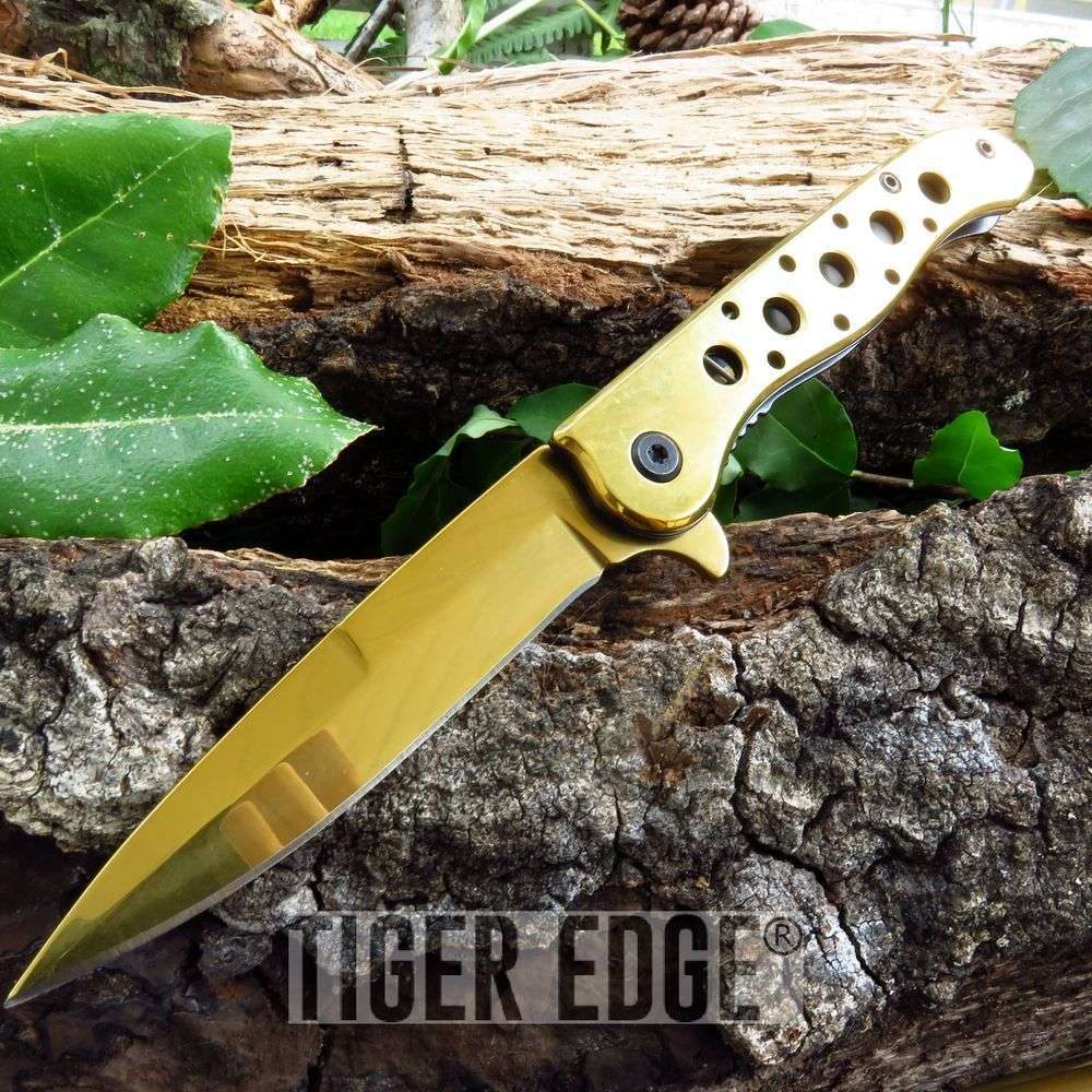 Spring Assist Folding Pocket Knife Gold Spear Point Blade Tactical Edc 300382-Gd