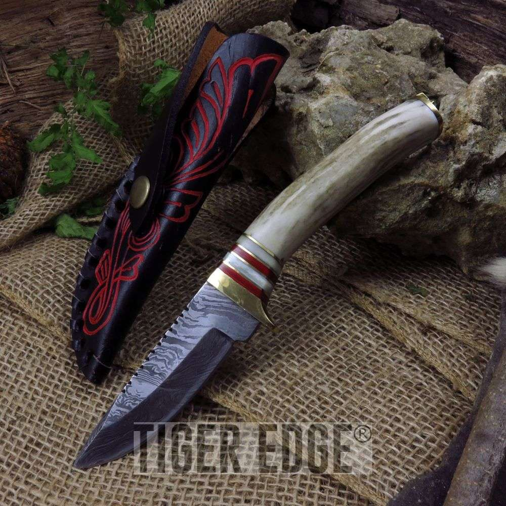 "8"" Damascus Steel, Stag Handle White Tail Hunter Skinner Knife W/ Sheath"