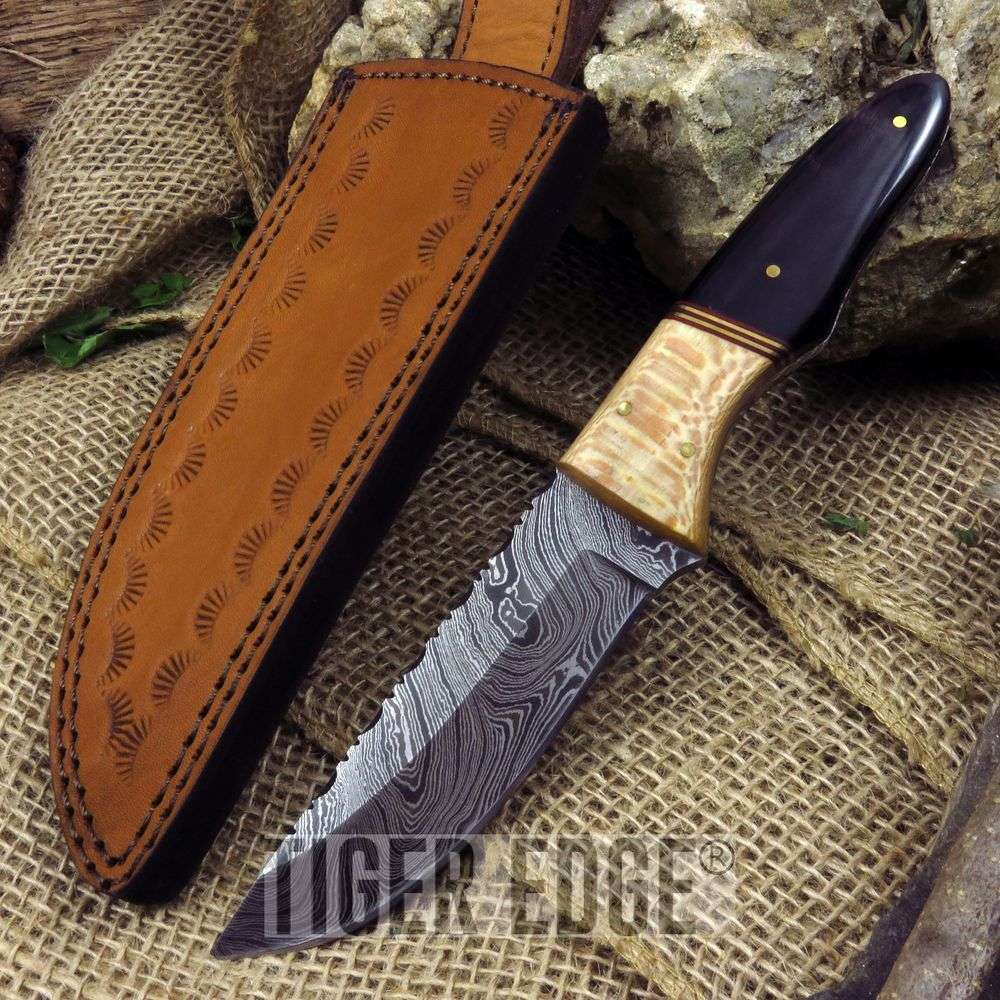 "9"" Damascus Steel Buffalo Horn Handle Full Tang Hunting Skinning Knife"