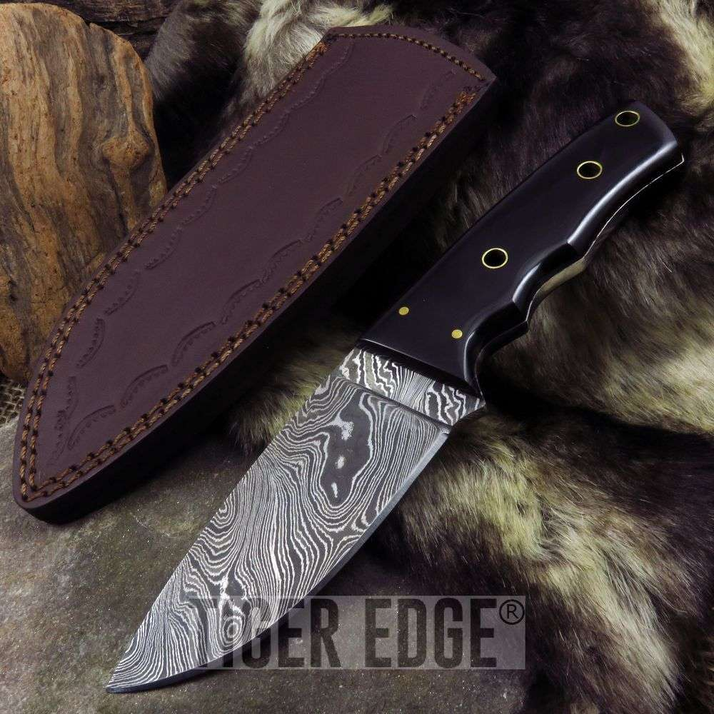 "Fixed-Blade Hunting Knife | Damascus Steel 8"" Full Tang Black Buffalo Horn"