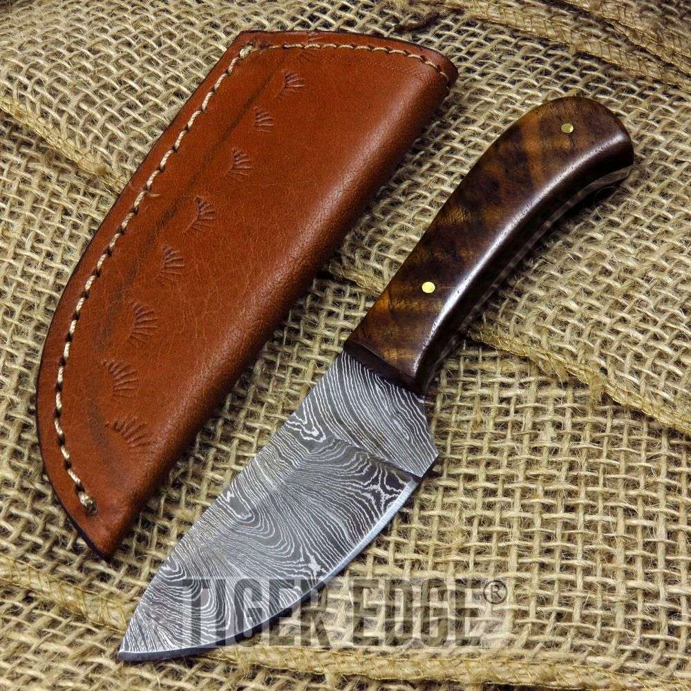 Damascus Brown Walnut Wood Handle Skinning Hunting Knife Display Men'S Gift