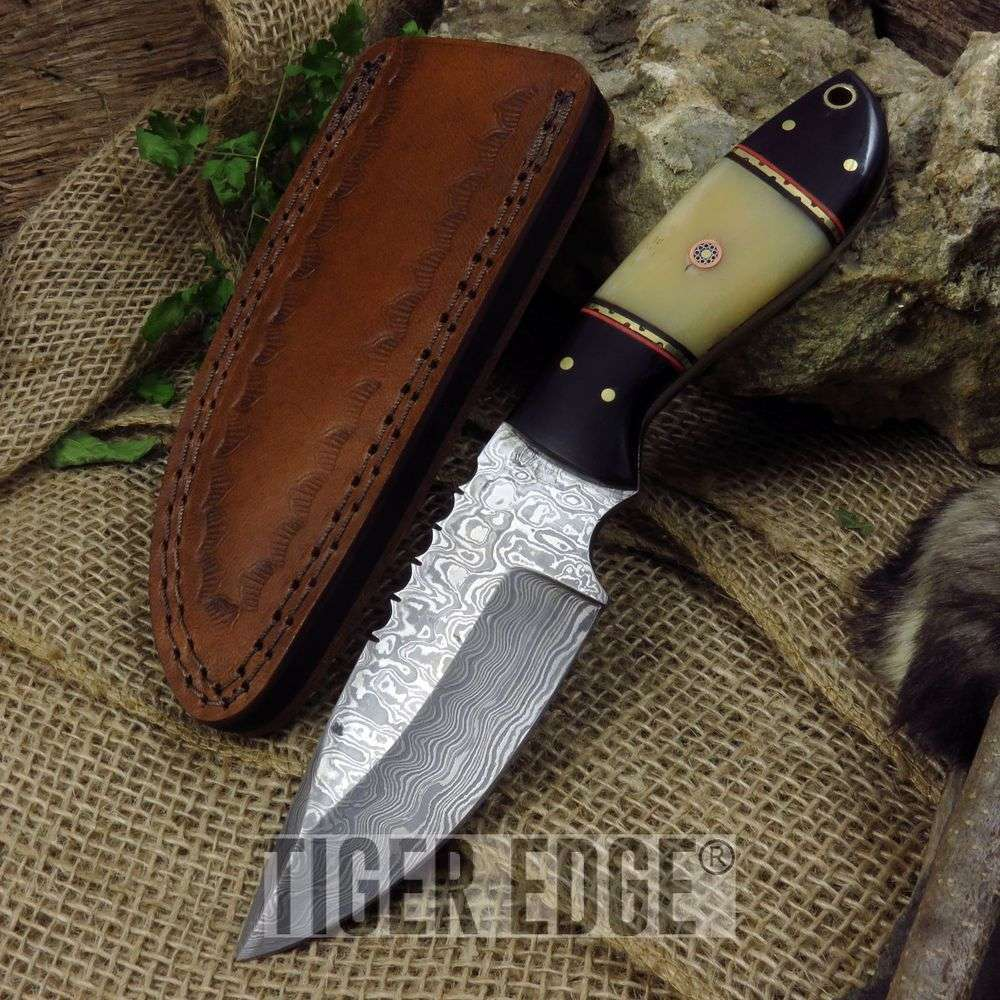 "9"" Real Buffalo Horn And Bone Handle Damascus Steel Full Tang Hunting Knife"