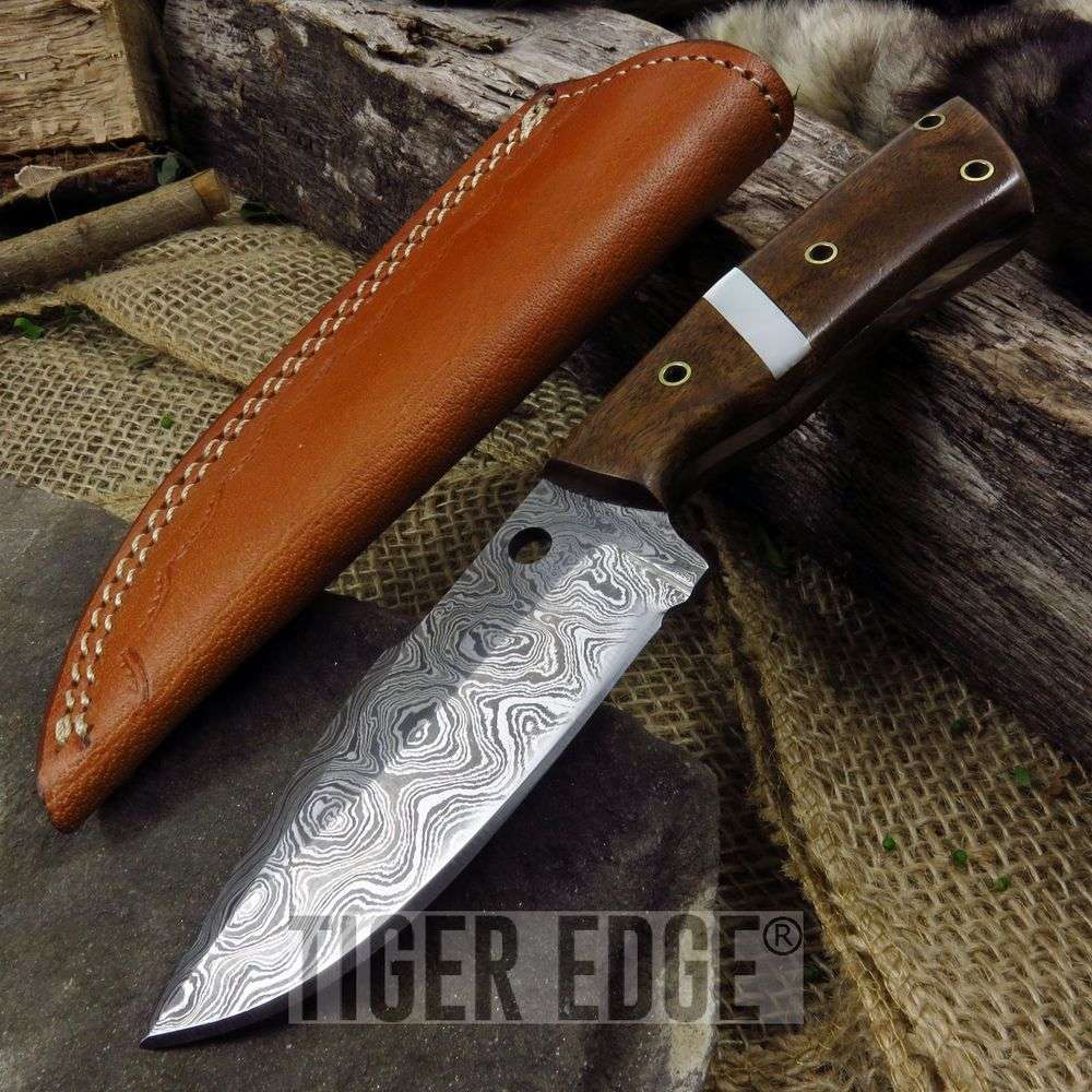 Fixed Blade Hunting Knife | Damascus Steel Blade Walnut + Pearl Handle Skinner