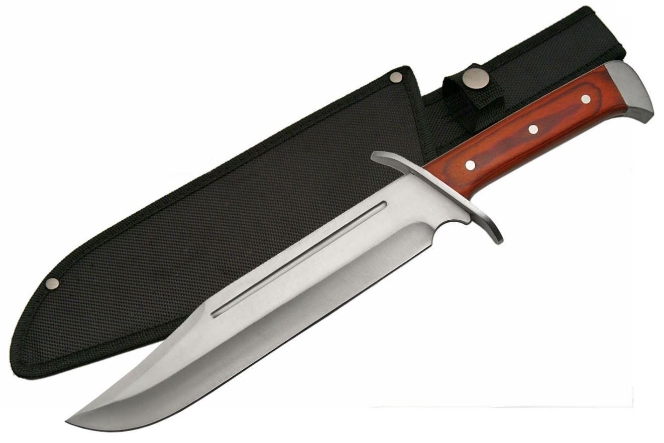 Bowie Knife   15.5