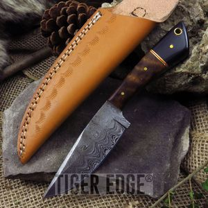 DAMASCUS STEEL FIXED BLADE HUNTING KNIFE Walnut Buffalo Horn w/ Sheath DM-1123HN