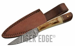 Damascus Steel Skinning Knife 7