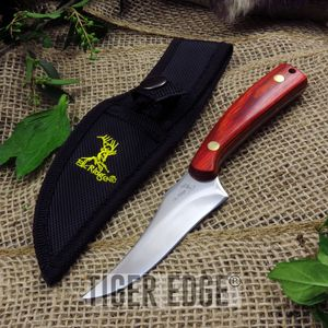 Fixed Blade Knife Elk Ridge Hunting Skinning Game Wood Handle W/ Sheather-299Wd